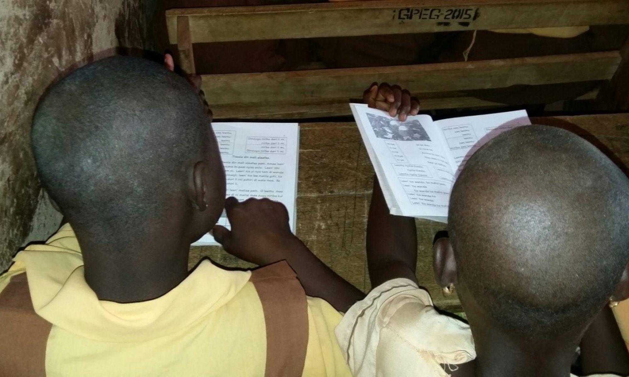 Literacy & Development through Partnership